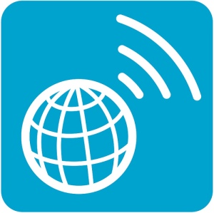 International Globe Icon